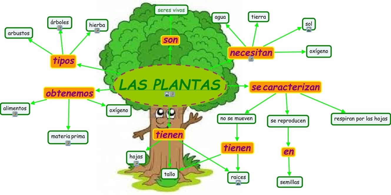 Blog del europa para 5 y 6 las plantas for Medio en el que habitan los arboles