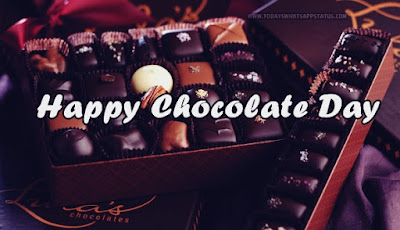100 Happy Chocolate Day Status in Hindi | Chocolate Day Quotes Words