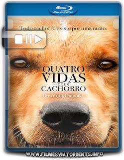 Quatro Vidas de um Cachorro Torrent