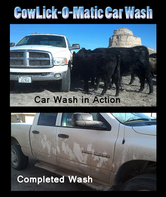 Country Chicken Girl: CowLick-O-Matic Car Wash