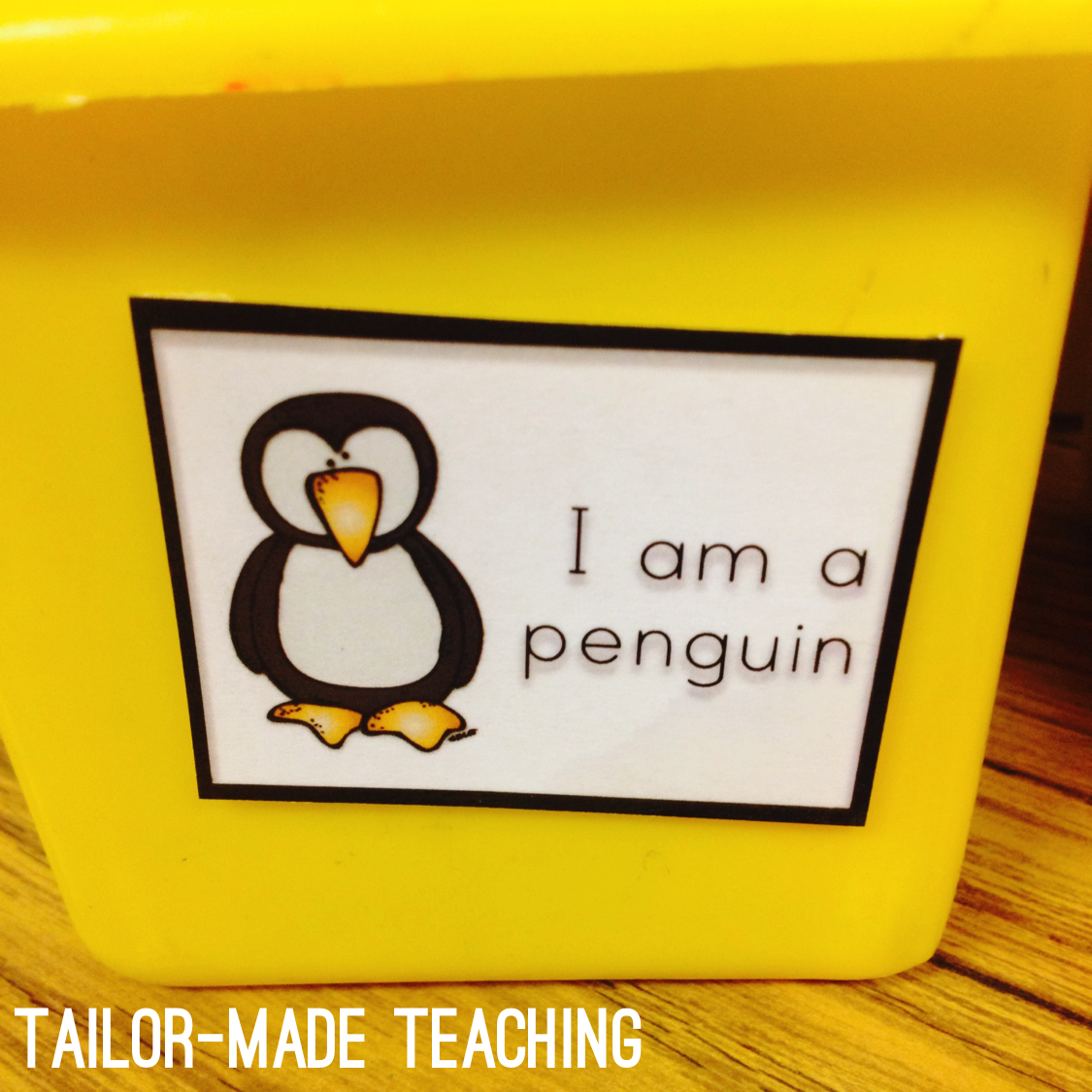 Tailor Made Teaching Differentiation Made Fun