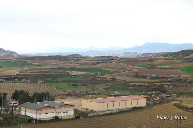 Vistas de Haro desde Briones
