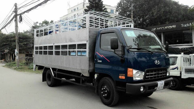 xe cho lon heo hyundai hd99 6 tan