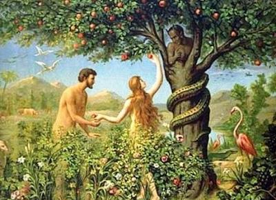 Kumpulan Cerita Alkitab Penyebab Manusia Jatuh dalam Dosa