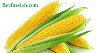 manfaat jagung untuk ibu hamil