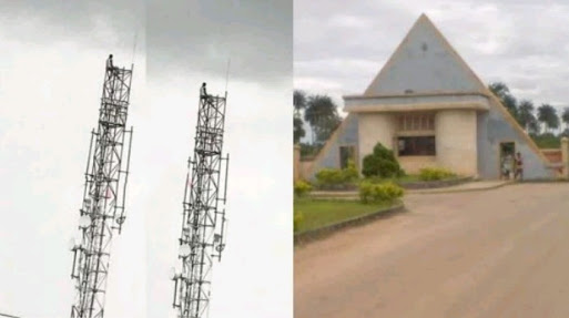 Delta State University Graduate Climbs A Mast After Running Mad (Photo)