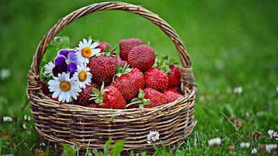 Ведический лунный посевной календарь огородника на июнь 2018