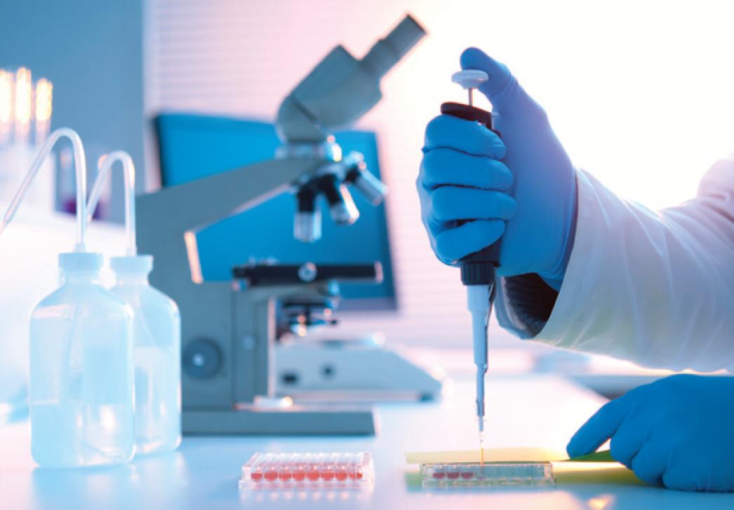 Vetlab Medicina Laboratorial Veterin 225 Ria