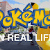 Artist Create Pokemon Go For the Real World