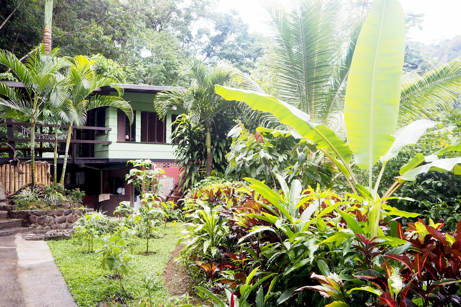 Dominica Cocoa Cottage
