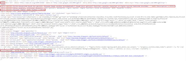 mucosmo site kaynak kodları
