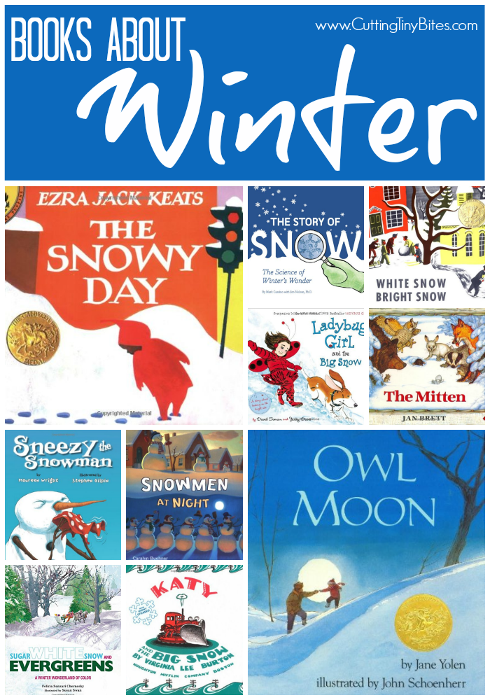 Picture Books About Winter for Children