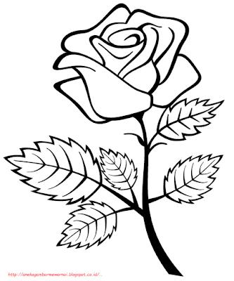 gambar bunga mawar - 1