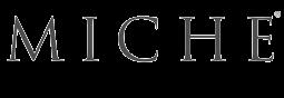 MICHE Logo