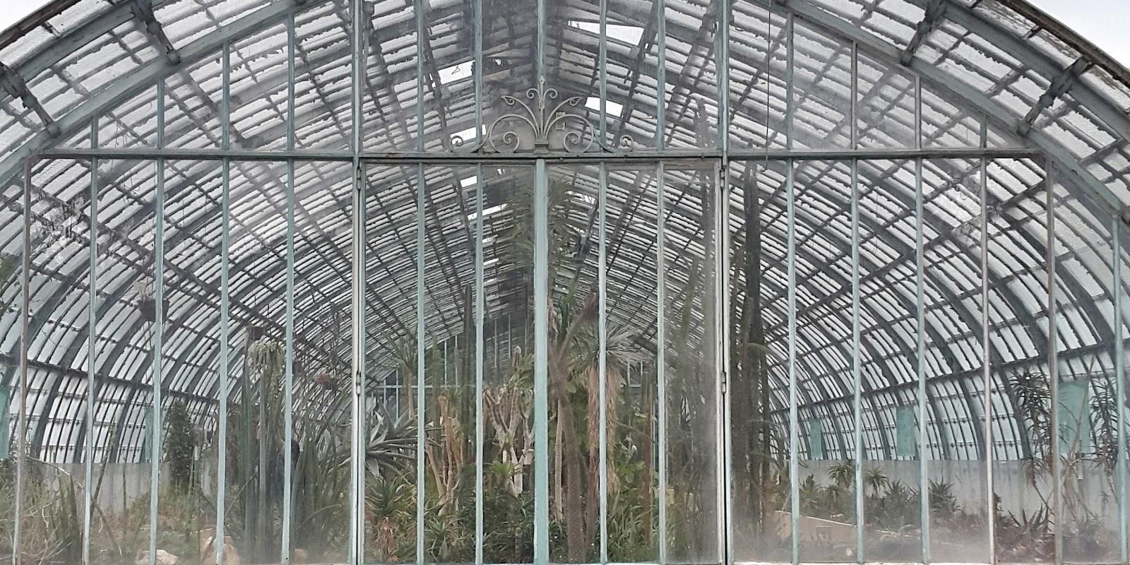 serres d'auteuil, jardin botanique, palmier, paris, jardin tropical, orchidee, carpes