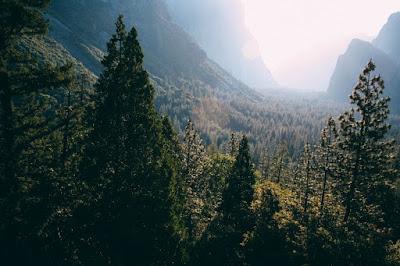 góry, zieleń, pacyfizm, porządny człowiek, odrzucenie przemocy, uprzedzenia i stereotypy, definicja, lewactwo