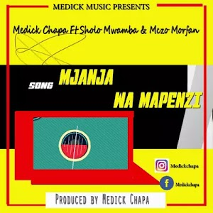 Download Audio | Medick Chapa ft Sholo Mwamba & Mczo Morfan - Mjanja wa Mapenzi