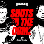 Destructo - Shots to the Dome (with Gerry Gonza) - Single Cover