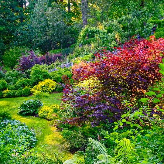 A Home for Elegance: A Whimsical Garden on Whimsical Backyard Ideas id=83678
