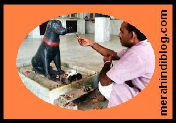 इस मंदिर में किसी भगवान की नहीं बल्कि कुत्ते की होती है पूजा - Dog puja