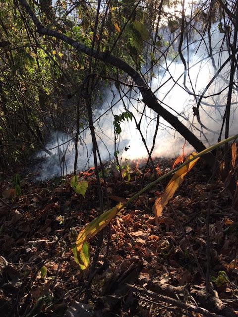 forest fire Lake Atitlan Guatemala