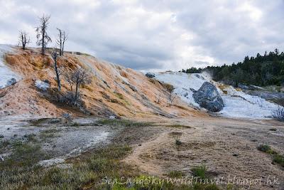 黃石國家公園, Mammoth Hot Springs, yellowstone national park, Palette Spring