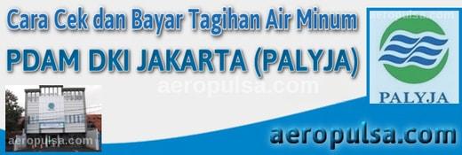 Cara cek dan bayar tagihan rekening PDAM DKI Jakarta (Palyja)