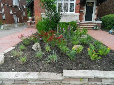 Avenue Road Front Garden Cleanup after by Paul Jung Toronto Gardening Services