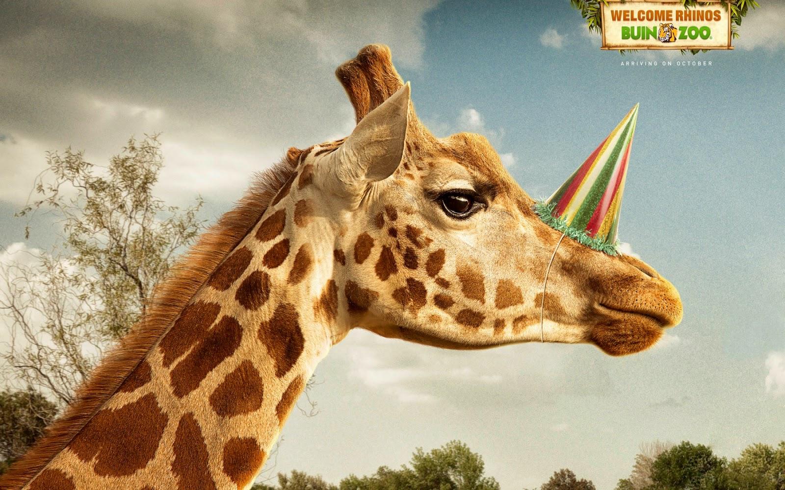 Rinoceronte, Publicidad creativa, Animales y fotos, Fotos con animales, Fiestas y publicidad