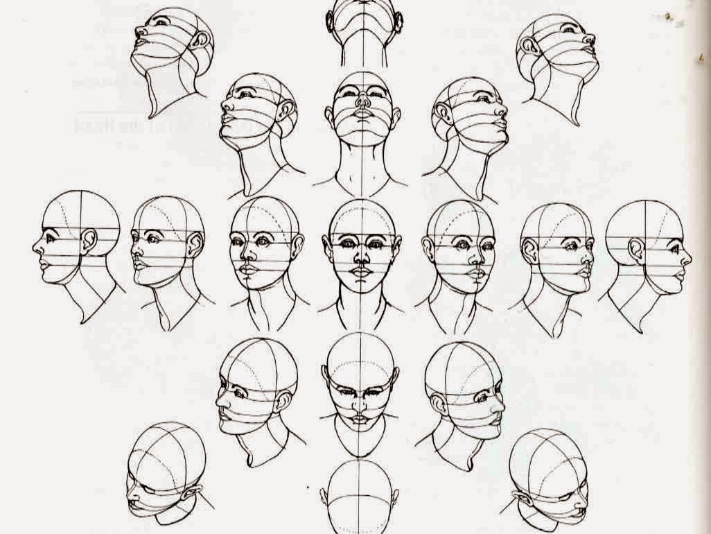 Drawing And Painting Tutorials Head And Face Reference Home / head and face reference. drawing and painting tutorials blogger