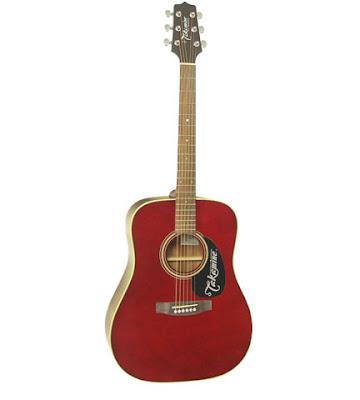 Đàn guitar acoustic Takamine D21