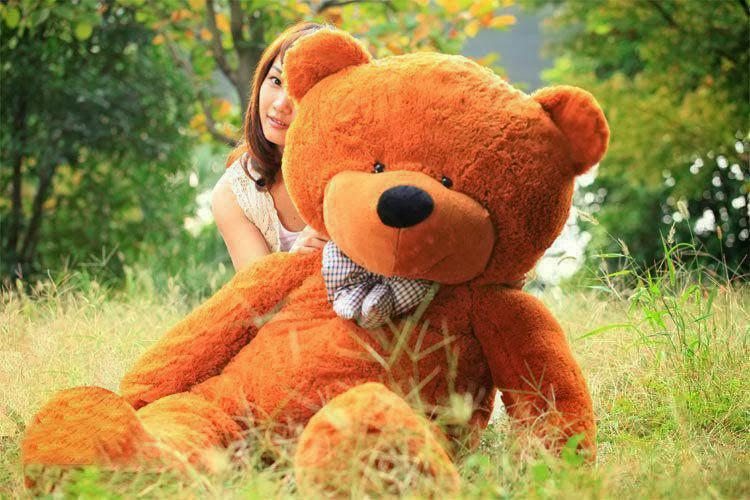 lovely teddy bear photo