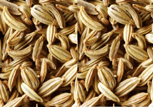 Fennel / Sauf Seeds meaning in hindi, Spanish, tamil, telugu, marathi, kannada, malayalam name, gujarati, in marathi, indian name, tamil, english, other names called as, translation