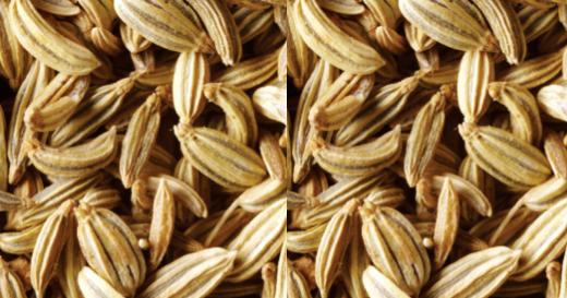 Fennel / Sauf Seeds meaning in hindi, Spanish, tamil, telugu