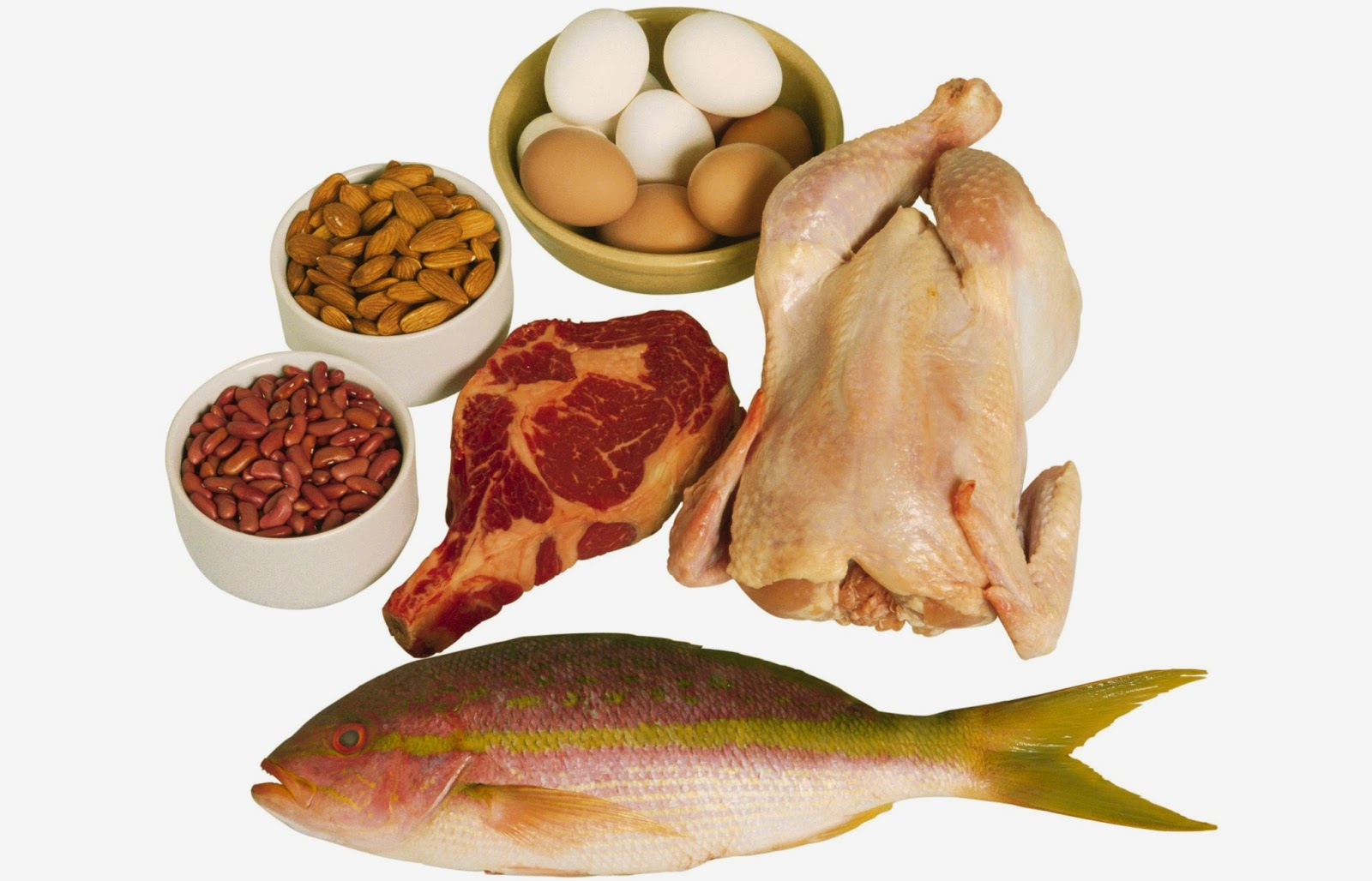 Enrich your foods with proteins