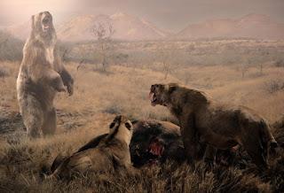 Arctotherium angustidens - El mayor oso de la historia