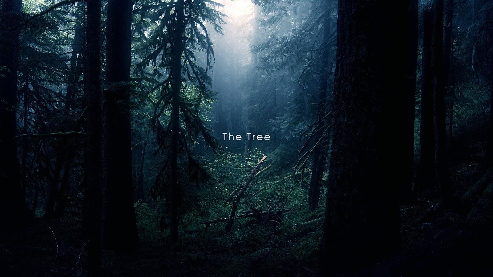 The Tree (Short Film)