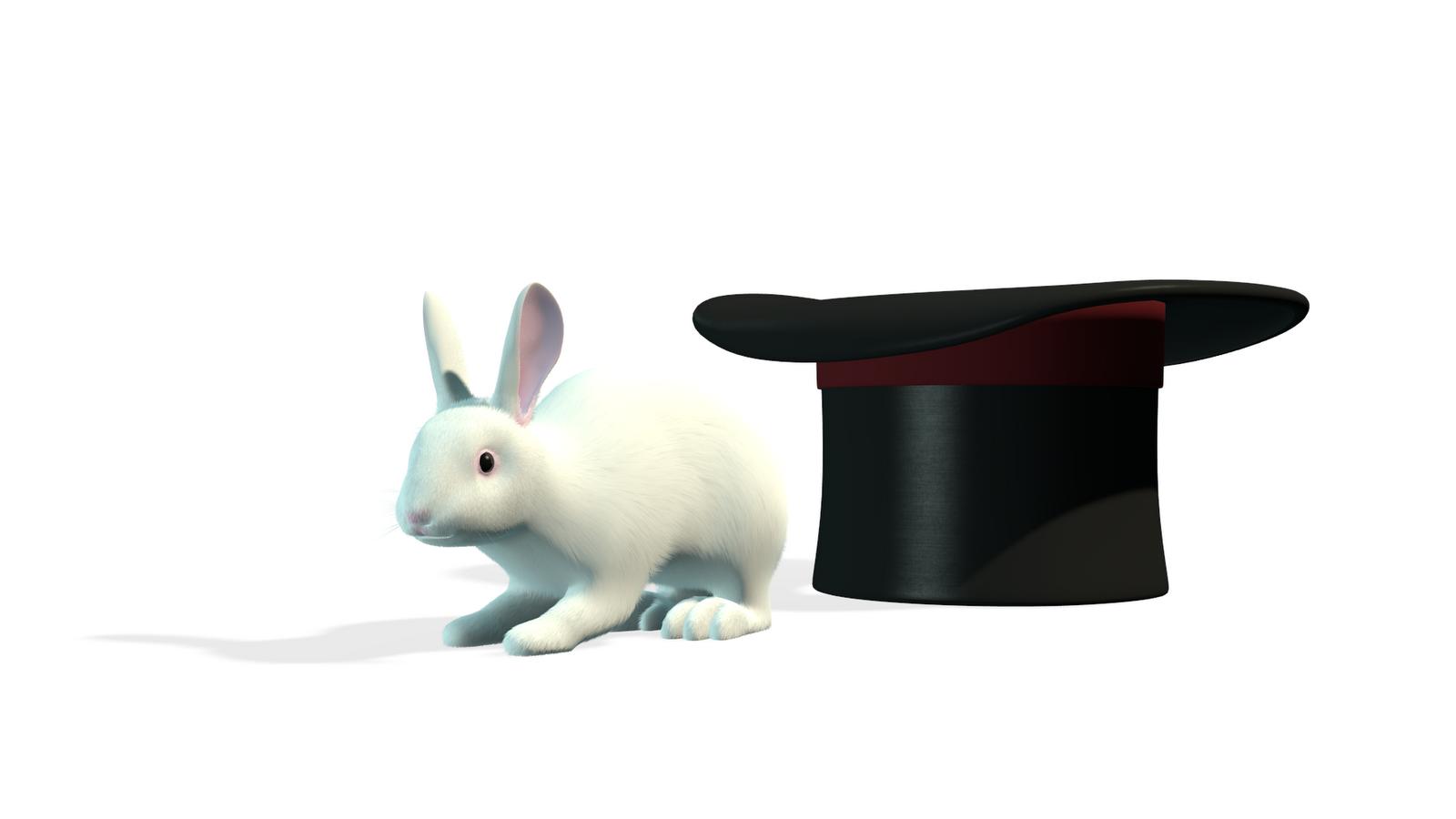 Blender Magicians Rabbit