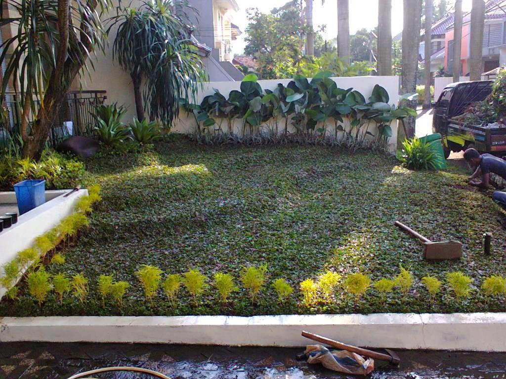 http://tukangtamankaryaalam.blogspot.com/2014/06/tukang-taman-tukang-taman-murah.html