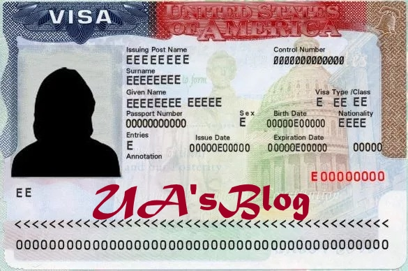 Fake visas: U.S. bans female accountant for life