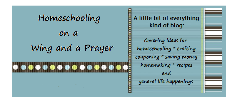 Homeschooling on a Wing and a Prayer