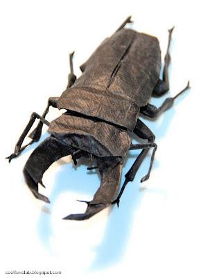 Escarabajo Papiroflexia u origami.