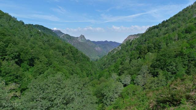 Montes de La Cerezal y Degoes