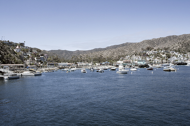Catalina Island, Avalon, Harbor, Catalina Island Harbor, Ferry Landing, Resort, Island