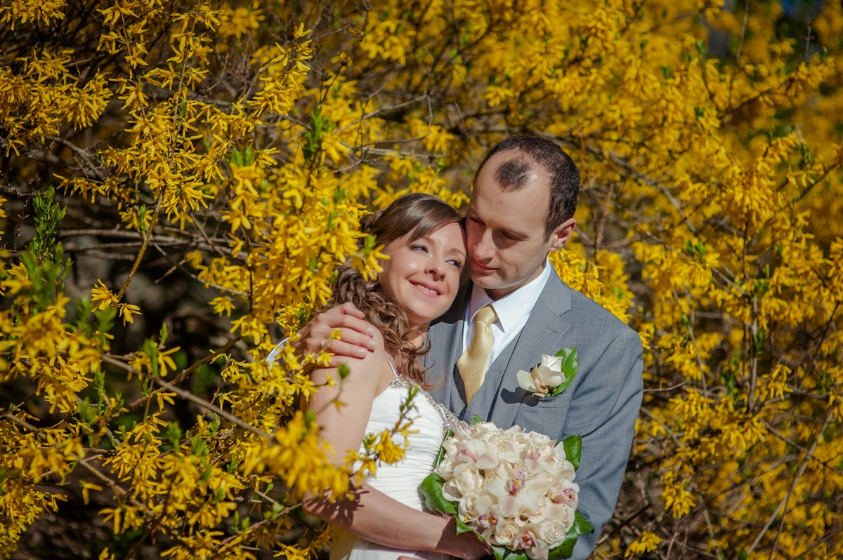 Colorful Outdoor Wedding Near The Park