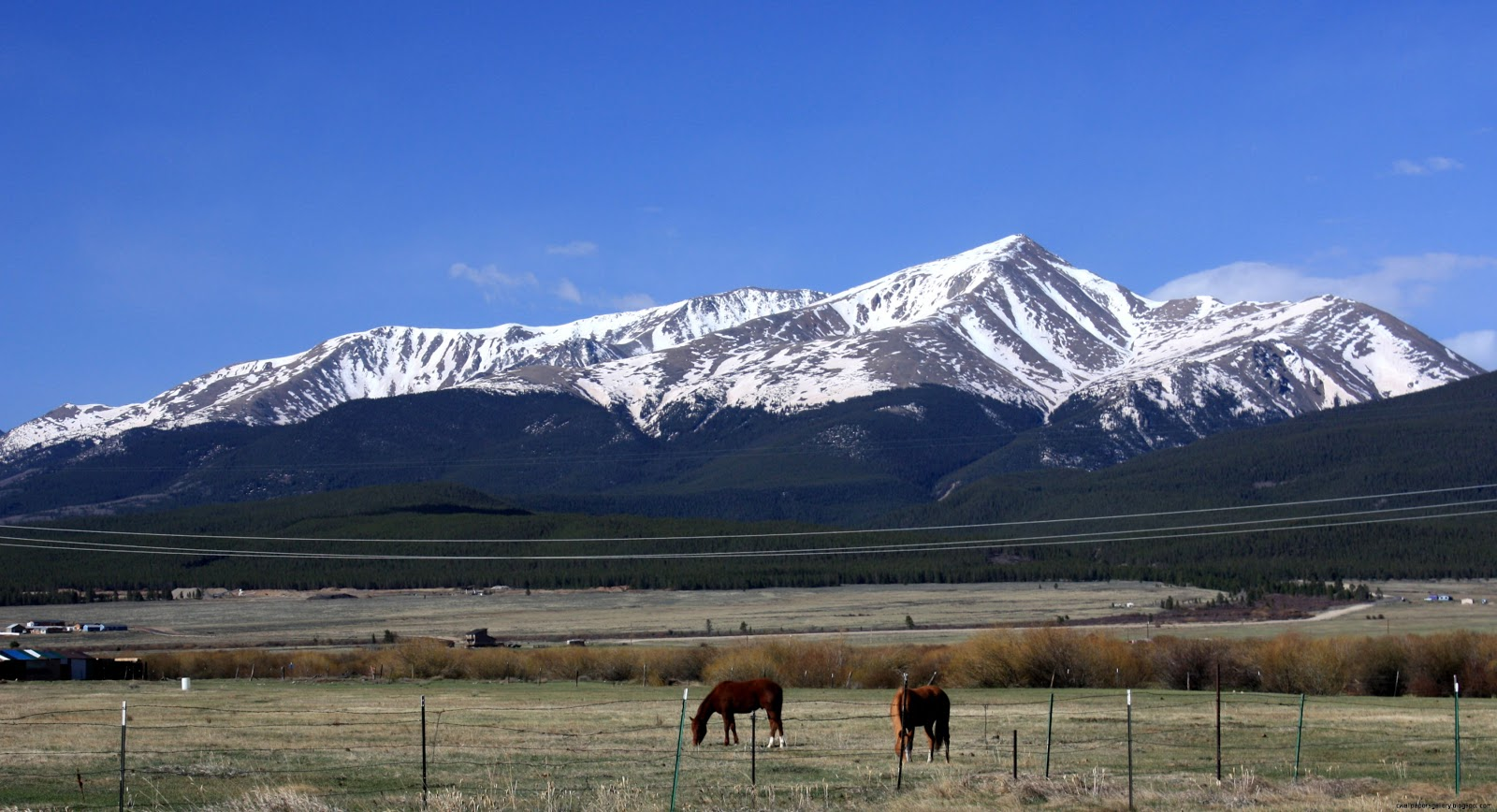 Mount Elbert Colorado
