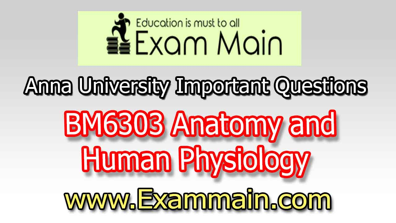 Bm6303 Anatomy And Human Physiology Important Questions Question