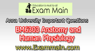 BM6303 ANATOMY AND HUMAN PHYSIOLOGY | Important  Questions | Question bank | Syllabus | Model and Previous Question papers | Download PDF