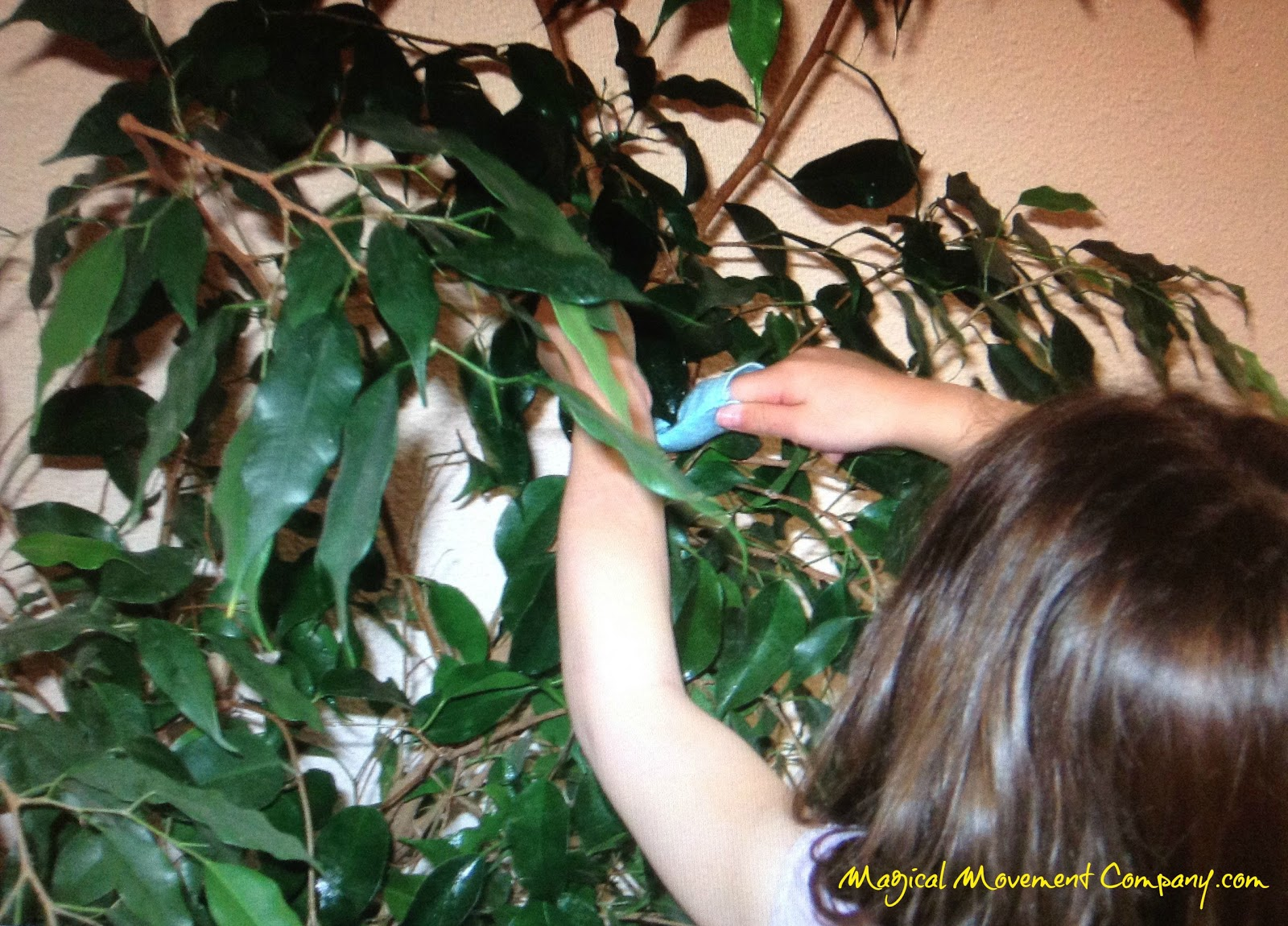 The Art of Leaves: A Montessori Childhood Favorite! | Magical ...