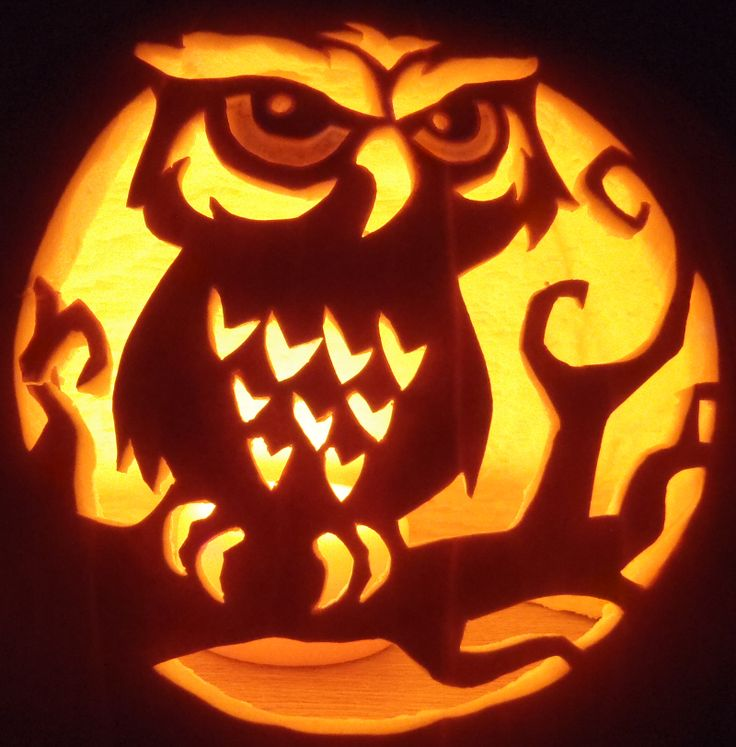 Easy and cute owl pumpkin carving templates ideas 2017 for Trick or treat pumpkin template